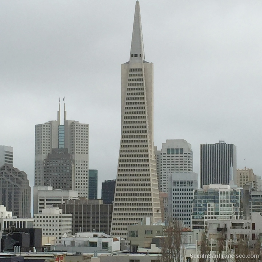 transamerica pyramid san francisco, view from telegraph hill